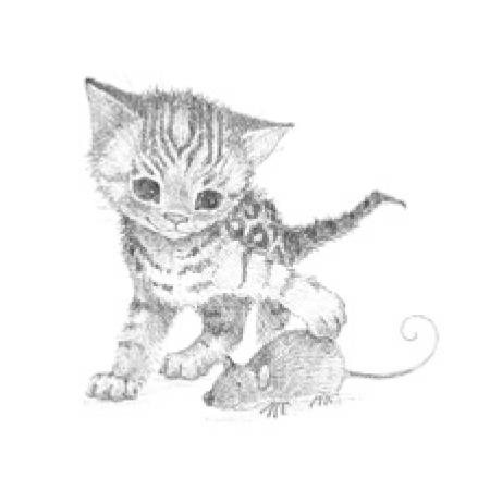 Príbehy o zvieratkách - knižná séria